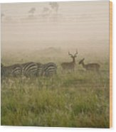 Misty Morning On The Savannah Wood Print