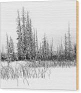 Misty Reeds Wood Print