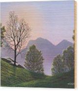 Misty Spring Meadow Wood Print