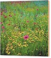 Mixed Wildflowers In Bloom Wood Print