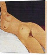 Modigliani Nude 1917 Wood Print