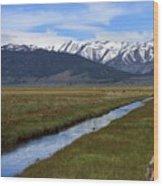 Mono County Nevada Wood Print