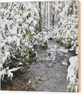Monongahela National Forest Wood Print