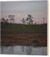 Moon Over Wetlands Wood Print