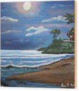 Moonlight In Rincon II Wood Print