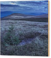 Moonlight On Stone Mountain Slope With Forest Wood Print