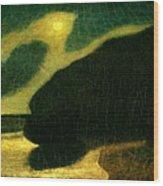 Moonlit Cove Wood Print