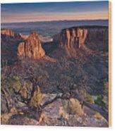 Morning At Colorado National Monument Wood Print