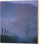 Morning Fog, #1, Smoky Mountains, Tennessee Wood Print