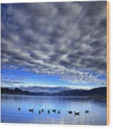 Morning Light On Okanagan Lake Wood Print