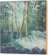 Mosquito Creek 2 Wood Print