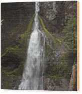 Mossy Waterfall Wood Print