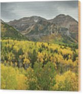 Mount Timpanogos Fall Colors Wood Print
