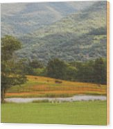 Mountain Farm With Pond In Artistic Version Wood Print