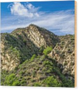Mountains At Towsley Canyon In Southern California Wood Print