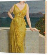 Mrs Kettlewell Wood Print
