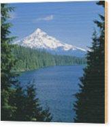 Mt. Hood National Forest Wood Print