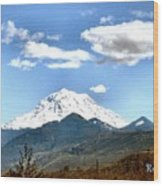 Mt Rainier Washington Wood Print
