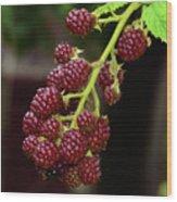 My Blackberries Wood Print