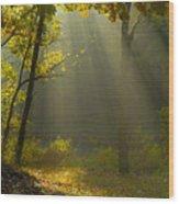 Mystic Morning Wood Print
