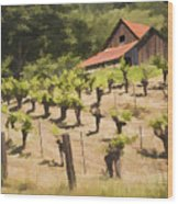 Napa Barn Wood Print