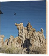 Natural Rock Formation And Wild Birds At Mono Lake, Eastern Sier Wood Print