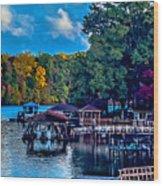 Nature Landscapes Around Lake Wylie South Carolina Wood Print