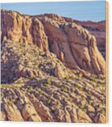 Navajo National Monument Canyons Wood Print