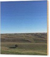 Nebraska Sandhills Wood Print
