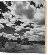 New Mexico Clouds Wood Print