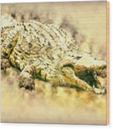 Nile River Crocodile Wood Print
