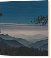 Misty Blue Shades Of Generals Highway 1 Wood Print