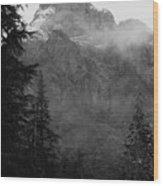 Noble Baring Wood Print