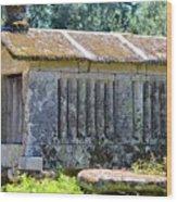 Northern Portugal  Wood Print