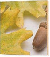 Oak Leaves And Acorns Wood Print
