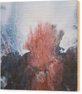 Ocean Flower Wood Print by Shirley McMahon
