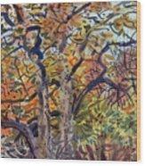 October Colors Wood Print