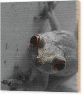 Ogling Amphibian Wood Print