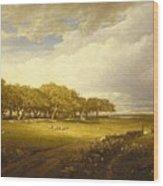 Old Orchard At Newport Wood Print
