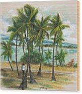 Old San Juan - Morro Wood Print