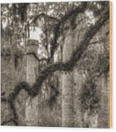 Old Sheldon Church Ruins Wood Print