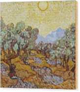 Olive Trees With Yellow Sky And Sun Wood Print