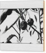 Olives Wood Print