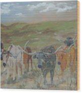 On The Chisholm Trail Wood Print