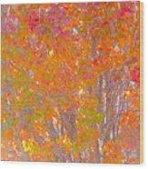 Orange And Red Autumn Wood Print