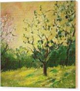 Orchard 45 Wood Print