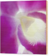 Orchid Abstract Wood Print