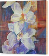 Orchids Behind Glass Wood Print