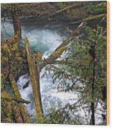 Oregon Stream Wood Print