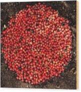 Organize Red Berries Wood Print
